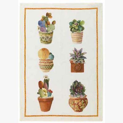 Kactus- Arancia Canovaccio