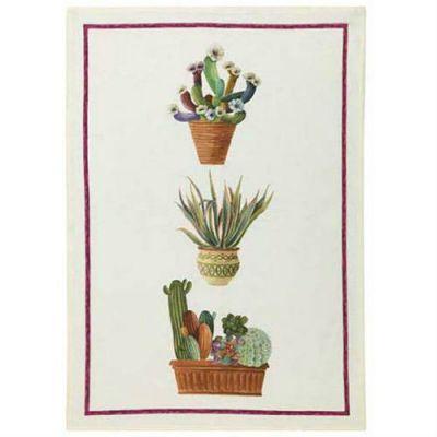 Kactus- Viola Canovaccio